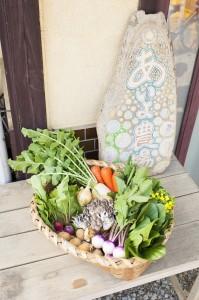 千葉県民の日、あいよ農場の新鮮 旬野菜の『手作りピクルス』プレゼント